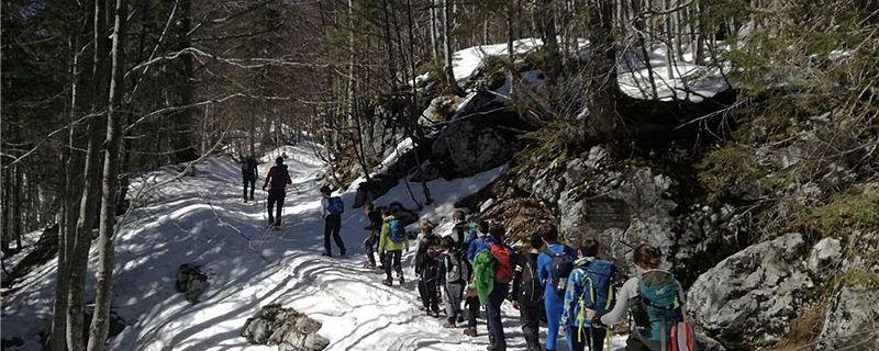 Mladi planinci raziskovali v Bohinju