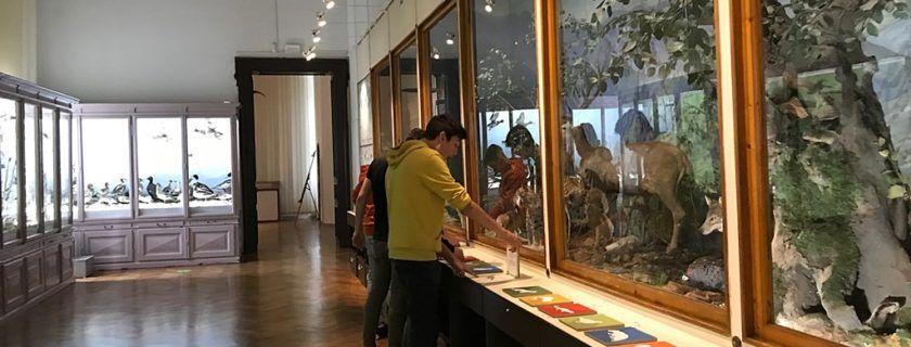 Obisk Prirodoslovnega muzeja